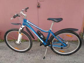 Велосипед Giant Сани летом