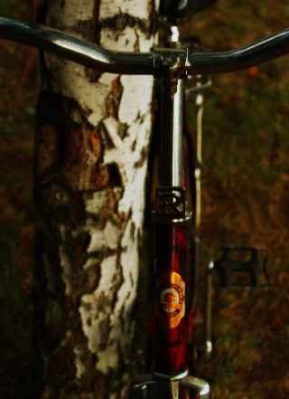 Женский ретро велосипед Роадмастер Rajpura