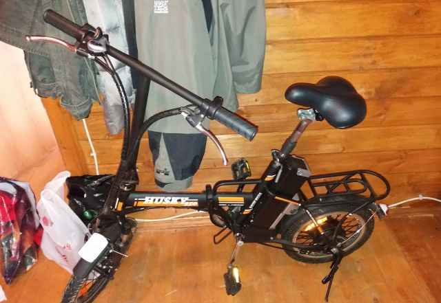 Электровелосипед Wellness Husky 350W - Фото #1