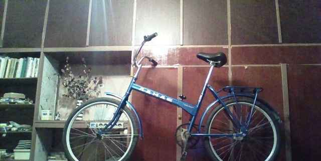 "Велосипед ""лама люкс"""