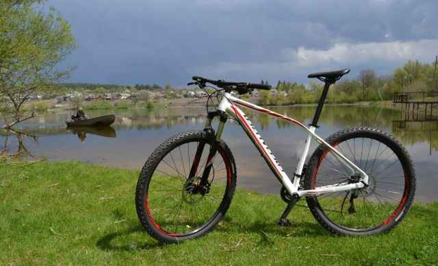 "Specialized Rockhopper comp 29"" 2015"