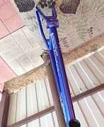 Рама BMX 20.5 WTP Colony Sect лимитед эдишн