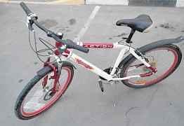 Велосипед регги - action