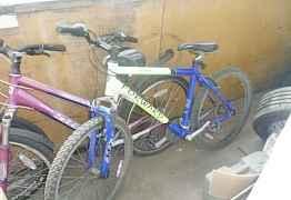 Двухколесный велосипед для взрослых