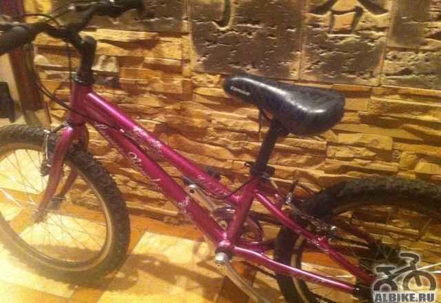Детский велосипед Corvus 517 kids